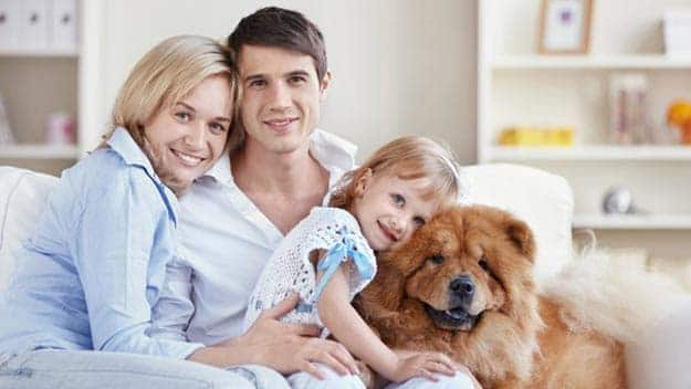 Wills & Trusts dog-young-family Direct Wills Barrow-in-Furness